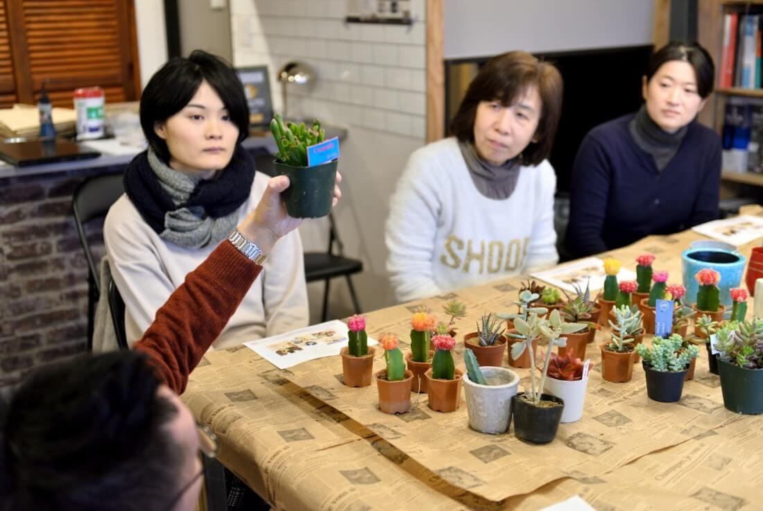 eventreport012:多肉植物ワークショップ④