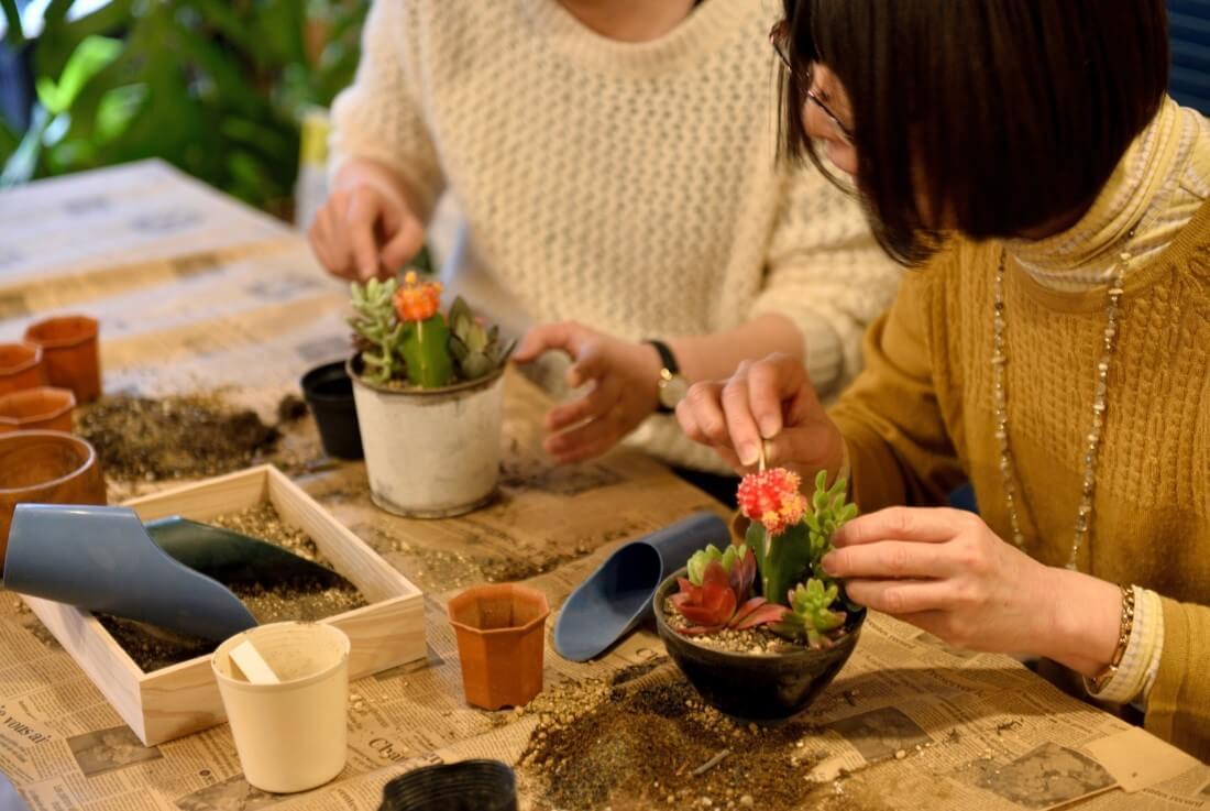 eventreport012:多肉植物ワークショップ⑨